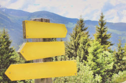 picture of direction signs with nature in background